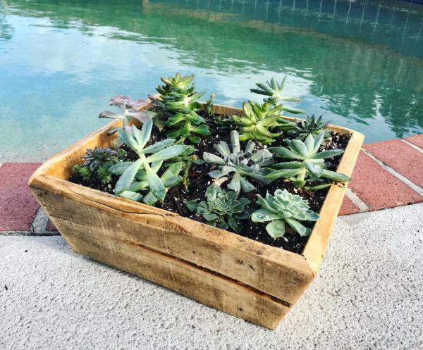 Simple Mitered Pallet Planter